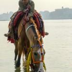 Tutaj zanieczyszczenie nie może być tak duże, skoro nawet koń wodą nie pogardzi :)