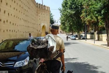 berber maroko