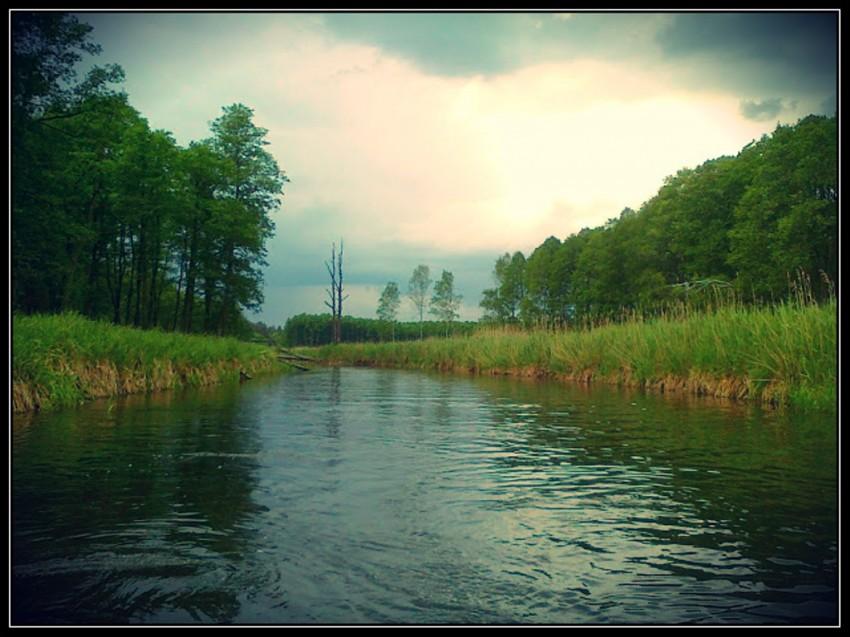 rzeka Omulew