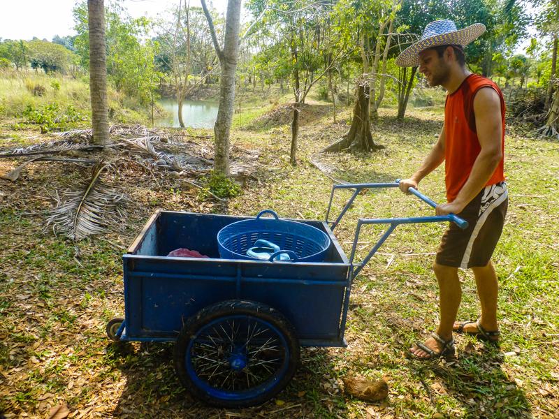 wolontariat w tajlandii