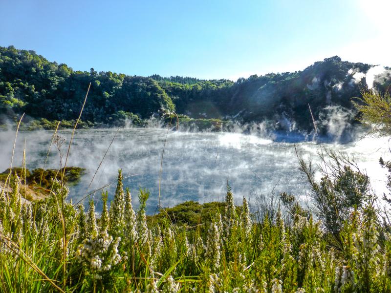 geotermalna nowa zelandia