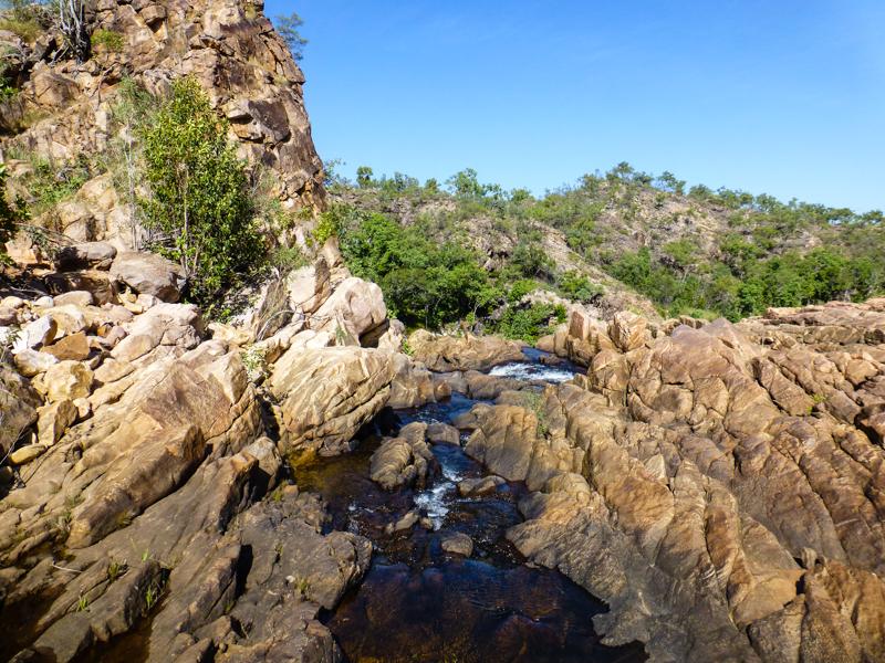 australia przyroda