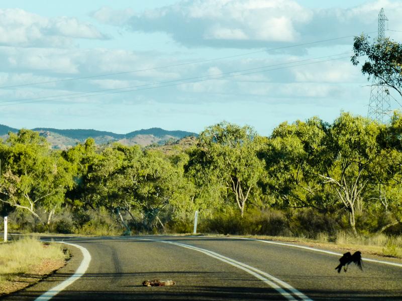 australijskie drogi