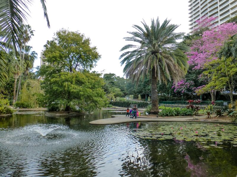 brisbane park botaniczny