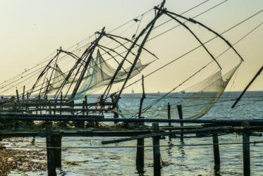 Chińskie sieci o zachodzie słońca