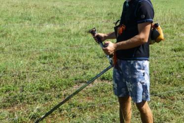 koszenie trawy australia