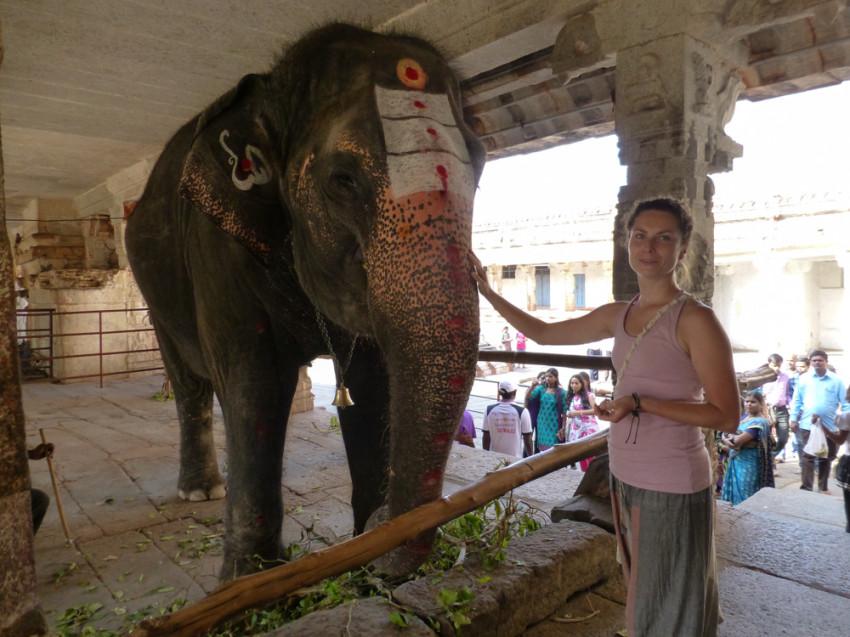 słoń hampi
