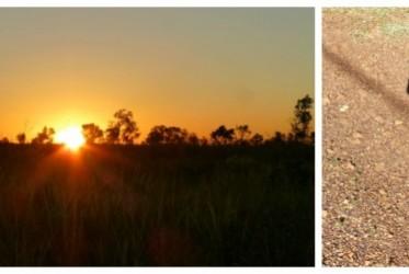 na outbacku