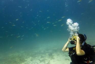 nauka nurkowania w tajlandii