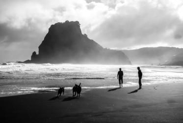plaża auckland