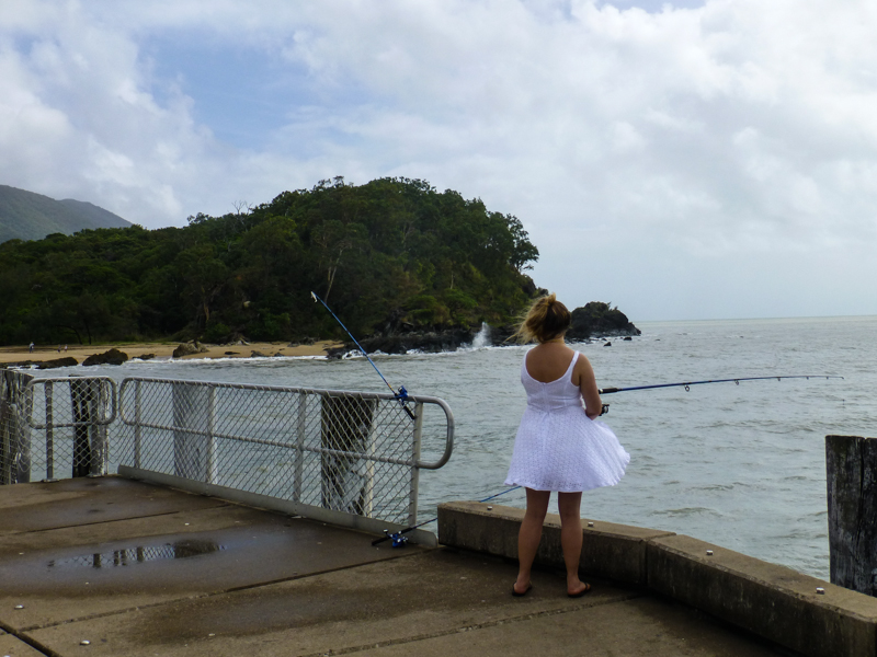 ryby palm cove