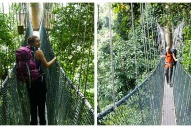 spacer po mostach malezja
