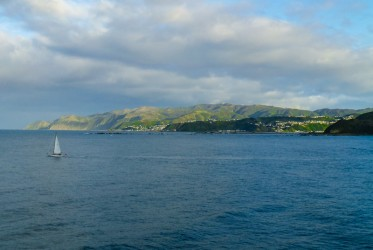 wellington do picton